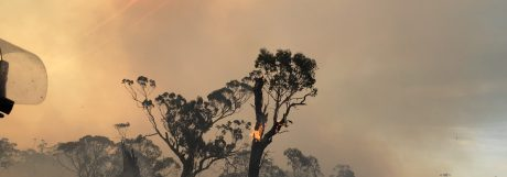 NSW RFS's Planning for Bushfire Protection Guide Updated